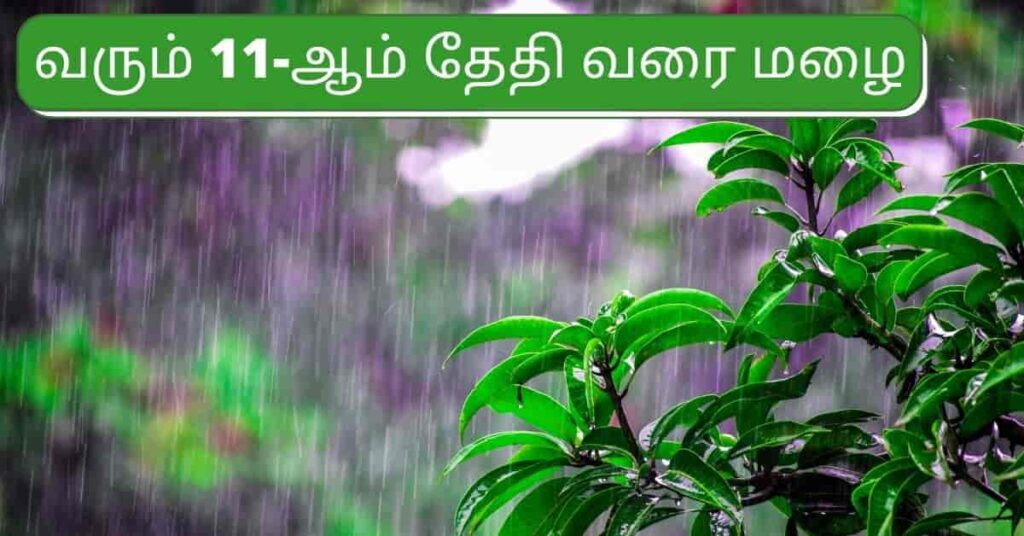 Announcement by the Director of the Rainy Meteorological Center Puviarasan till the 11th in Tamil Nadu